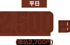 平日料金 2,500円